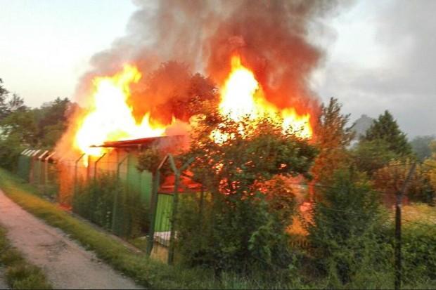 Sprawczyni podpalenia altany ujęta przez strażników miejskich