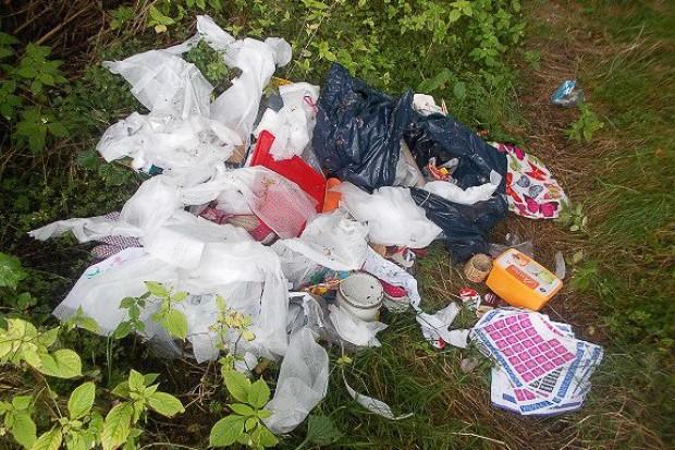 Sprawczyni zaśmiecania terenu przy Piastów ukarana