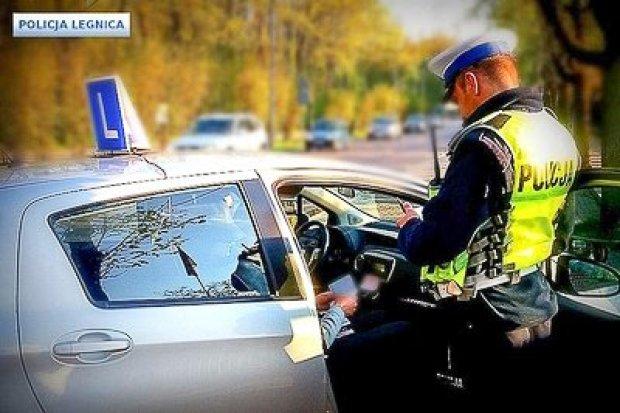 Policja skontrolowała elki. Efekt? 12 mandatów i 5 zatrzymanych dowodów rejestracyjnych