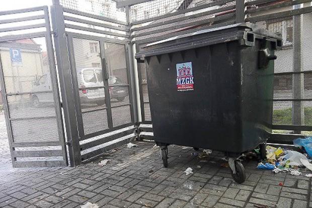 Zamykaj kontenery na śmieci! Unikniesz 500-zł mandatu i odwiedzin dzikich zwierząt