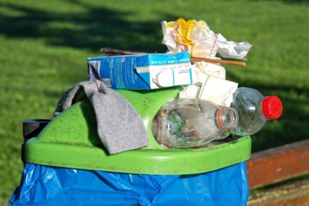 Zasady segregacji śmieci według zmian w ustawie obowiązujących od 1 lipca 2017 roku