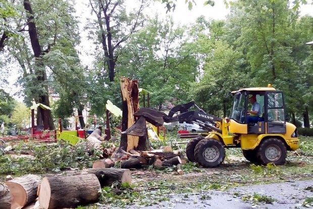 Bolesławiec po nawałnicy: służby sprzątają miasto