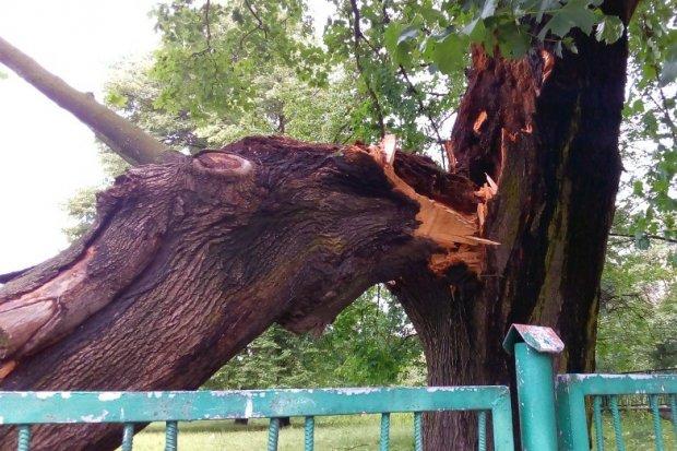 Łowcy burz ostrzegają przed nawałnicami