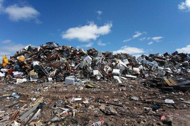 Recykling w Polsce na tle Europy – jak to wygląda?