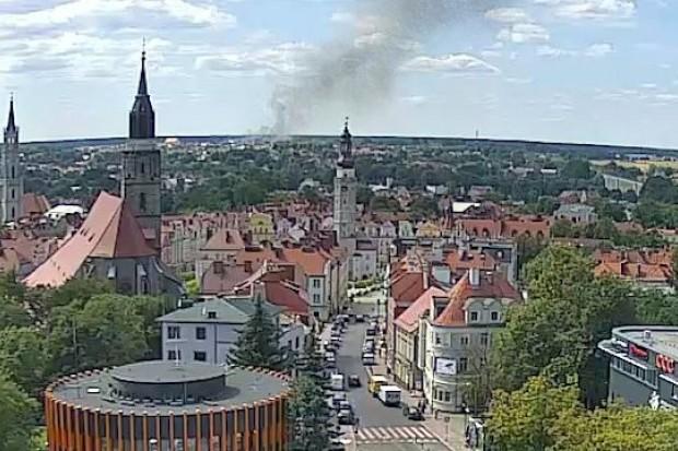 Pożar ścierniska na wylocie na Zgorzelec