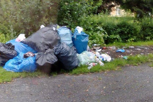 Śmieci w gminie Nowogrodziec. System workowy się nie sprawdza?