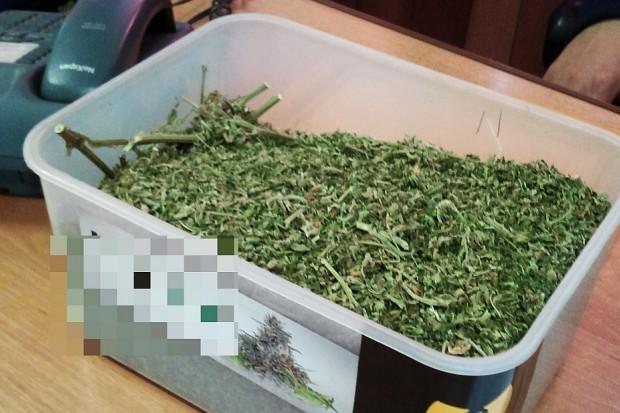 Policja zatrzymała dwóch mężczyzn i zabezpieczyła 2,4 tys. porcji narkotyków