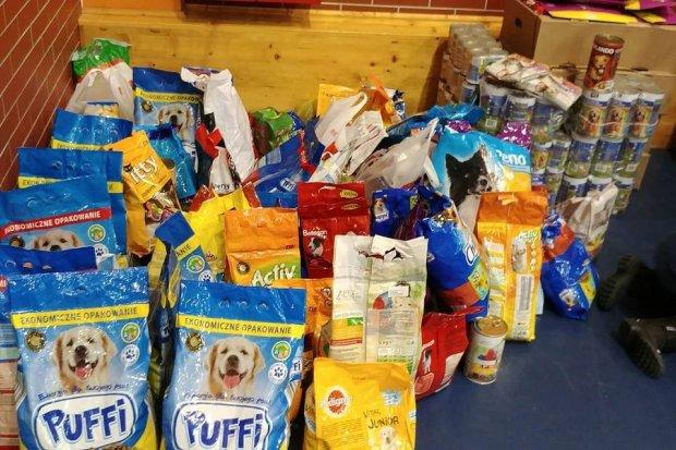 Około 350 kg karmy dla zwierząt zebrano na I Mikołajkowym Maratonie Zumba Fitness