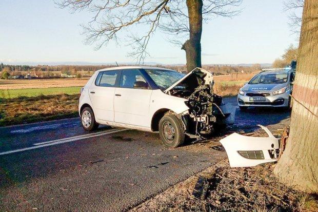 Kierowca Škody wjechał w drzewo