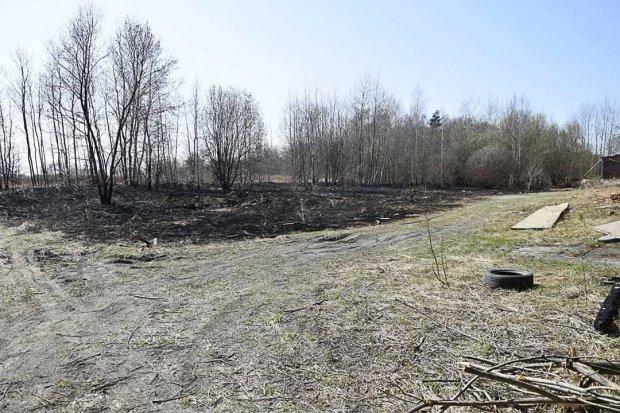 Nowogrodzianka ma apel do wypalaczy traw: zacznijcie od swoich domów!
