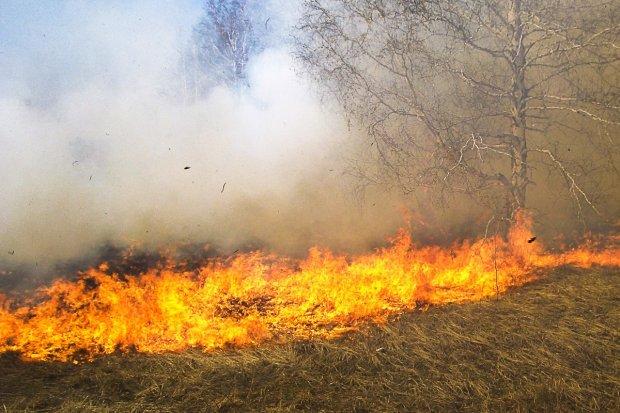 Strażacy z Nowogrodźca dziękują mieszkańcom za… niewypalanie traw