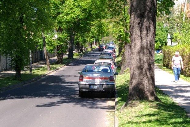 Czy na Spokojnej powinien być zakaz parkowania?