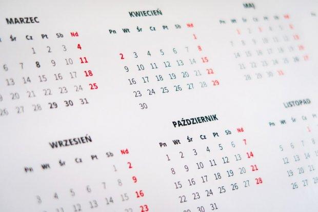 Kalendarz imprez miejskich w styczniu 2019