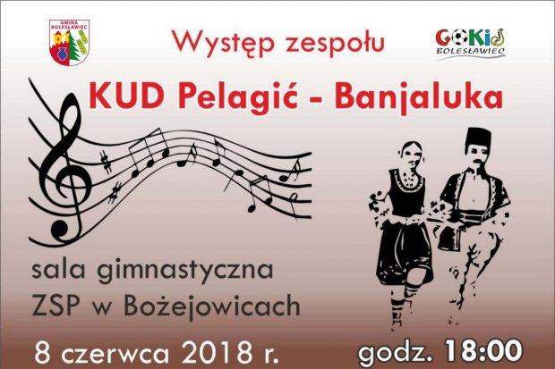 Występ zespołu PELAGIĆ z Bośni w Bożejowicach