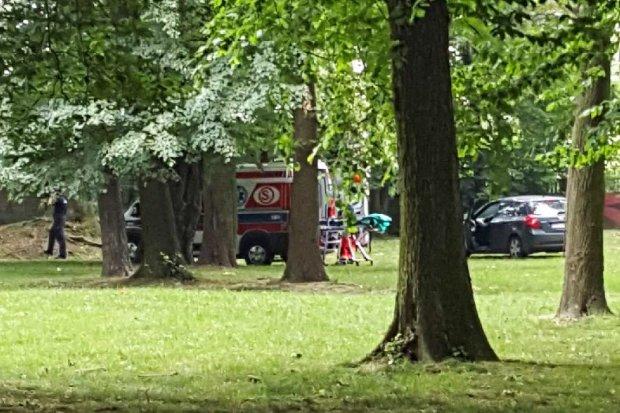 Powiesił się na drzewie w centrum miasta