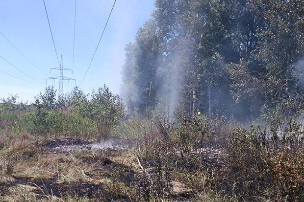 Wywieźli śmieci do lasu i je podpalili