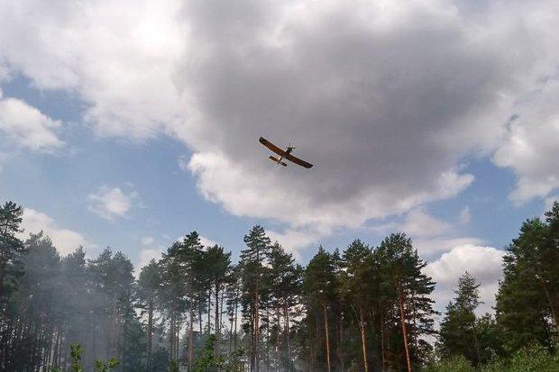 Poważne pożary lasu w Węglińcu. Prawdopodobna przyczyna: podpalenie