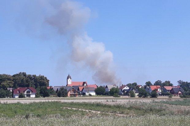 Kolejne pożary ściernisk w Kruszynie i w Iwinach