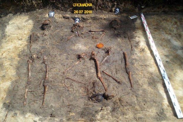 Gromadka: znaleźli kości niemieckich żołnierzy
