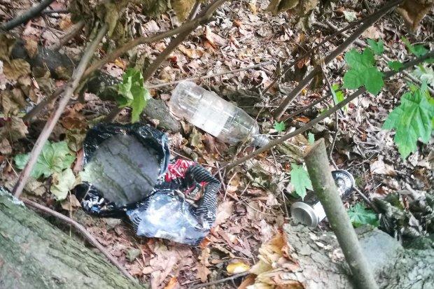 Harcerz posprzątał bajzel w lesie przy Jeleniogórskiej