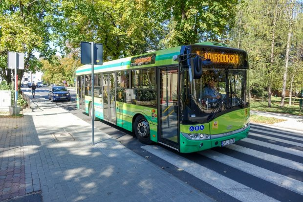 Jak będą kursować autobusy we Wszystkich Świętych