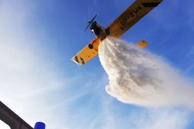 Duży pożar lasu w gminie Gromadka. Wezwano samolot gaśniczy