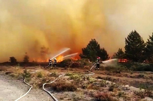Znów płonie poligon. Zobacz jak strażacy walczą z ogniem