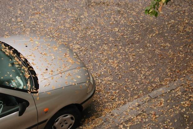 Kierowco, zabezpiecz swoje auto na jesień!