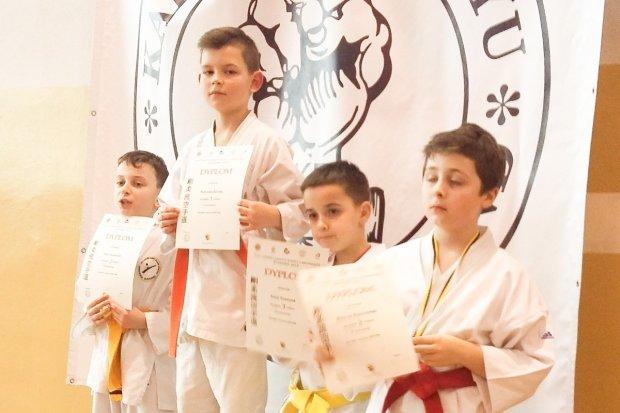Grad medali bolesławieckich karateków w Ścinawie