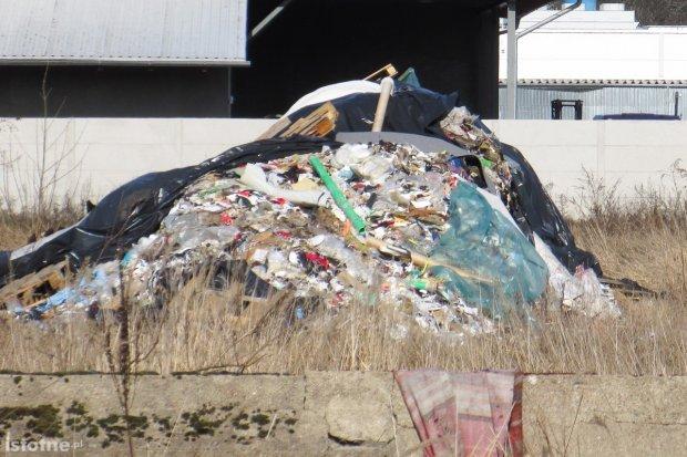 Hałda śmieci straszy na Orlej