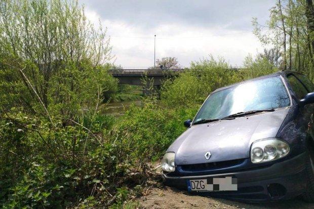 Renault na bobrowej ścieżce
