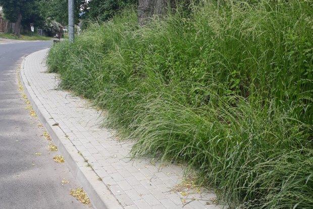 Problematyczny chodnik w Ławszowej