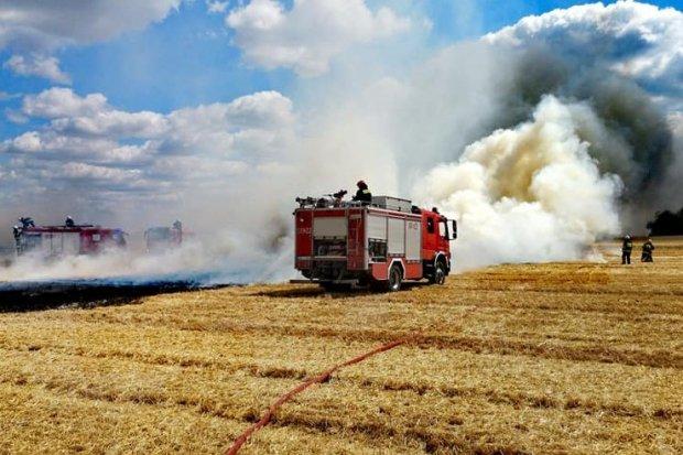 Duży pożar na polach koło Olszanicy. Straż i samoloty gaśnicze w akcji