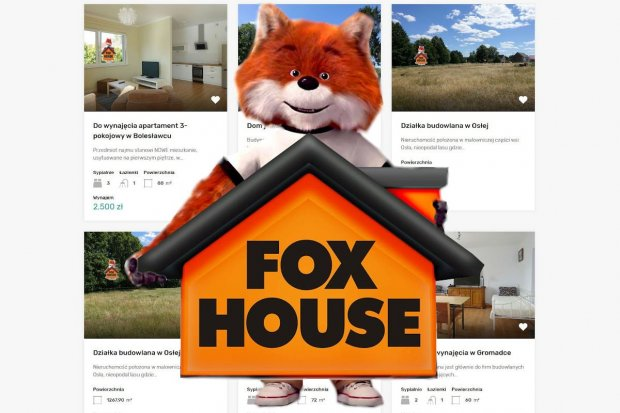 Doświadczenie, Skuteczność, Obsługa kredytowa – Biuro Nieruchomości FoxHouse