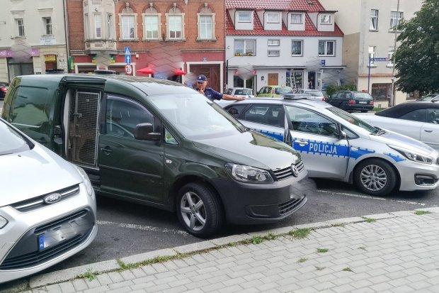 Brytyjczyk pił wino w lokalu i chciał odjechać autem. A potem… pogryzł policjanta
