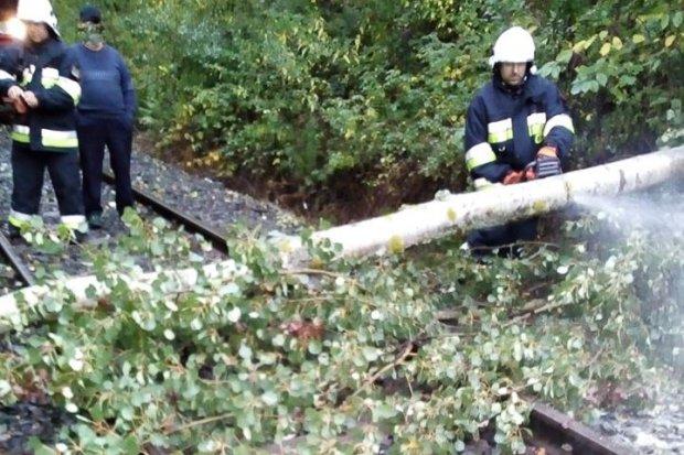 Wichura, dwie kolizje, pożar – intensywny początek tygodnia dla strażaków