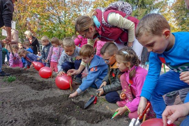 """Przedszkolaki posadziły """"Tulipany Mocy"""", aby wesprzeć ciężko chore dzieciaki"""