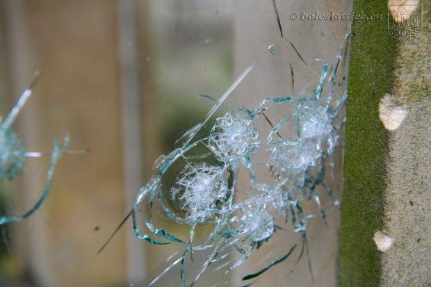 Ktoś strzela z broni pneumatycznej do wiat przystankowych i do okien