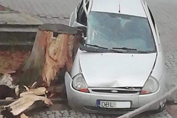 Wypadek w Kruszynie, kierowca wjechał w pień drzewa
