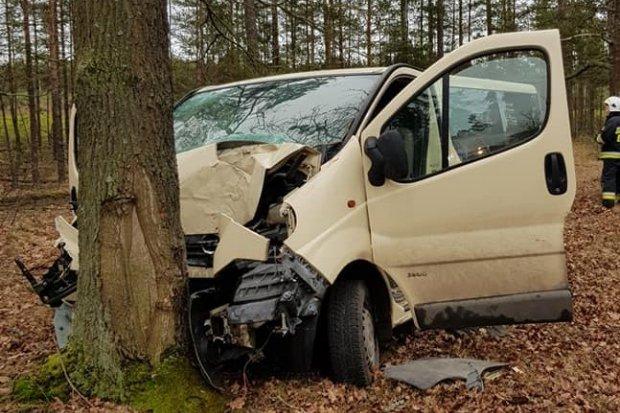 Bus wjechał w drzewo. Jedna osoba ranna