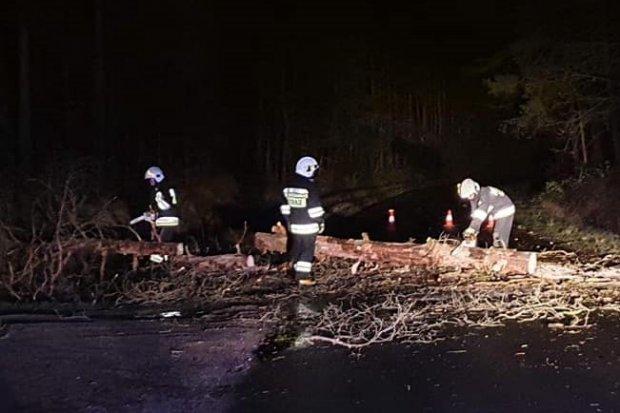 Huragan Julia: nocne akcje strażaków z Trzebienia