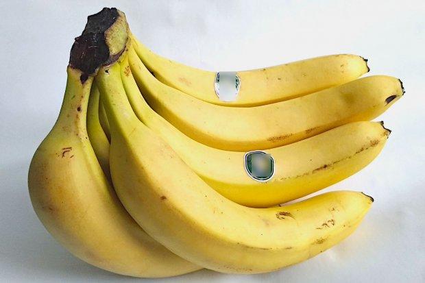 Przemacała cały karton bananów, potem wzięła się za bułki
