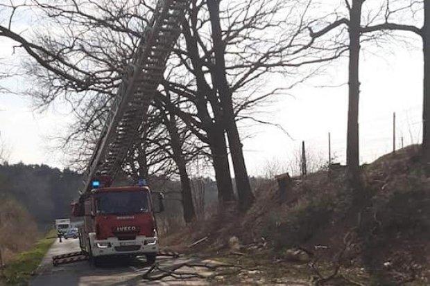Akcja strażaków koło Zabłocia