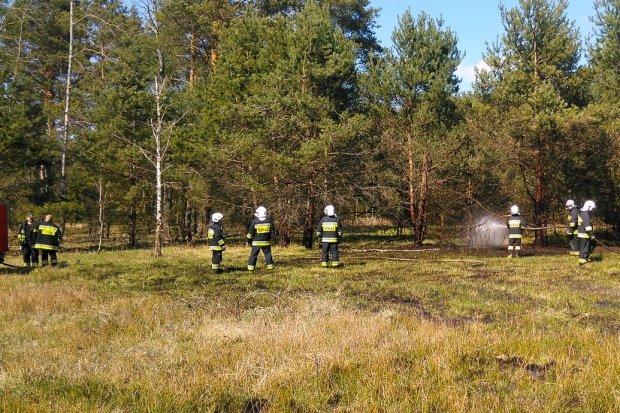 Pożar koło miejscowości Motyle