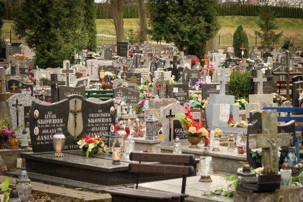 Cmentarz komunalny znów otwarty