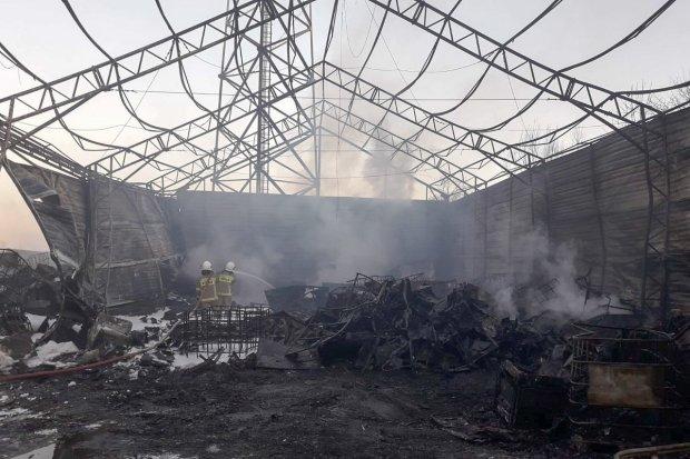 67 strażaków gasiło pożar koło Gryfowa. Straty oszacowano na 2,5 mln zł