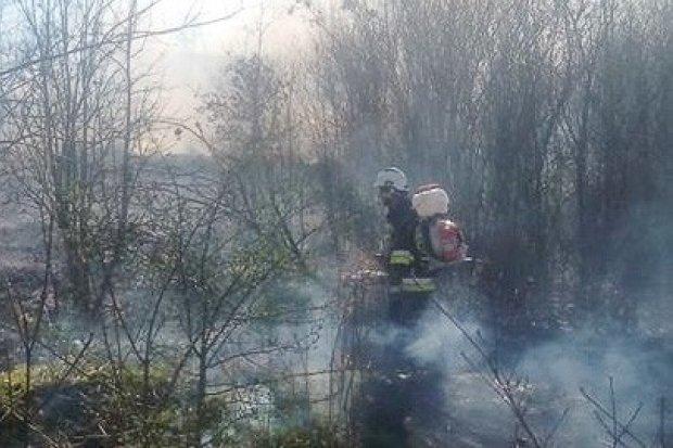 Pożar w Raciborowicach, sprawa zgłoszona na policję