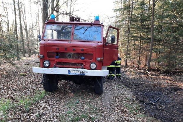 Strażacy z gminy Gromadka z dofinansowaniem na zakup sprzętu