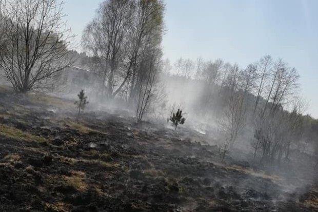 Duży pożar w Tomisławiu. Wezwano samolot gaśniczy