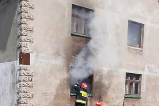 Kolejny pożar w Borówkach, i to w tym samym miejscu. Sprawę bada policja